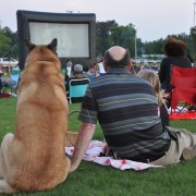 Knightdale Outdoor Movie Night Series